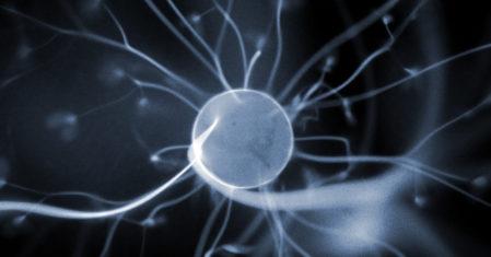 하지현의 게임과 뇌과학 #9 게임을 오래하면 할수록 뇌가 발달한다?