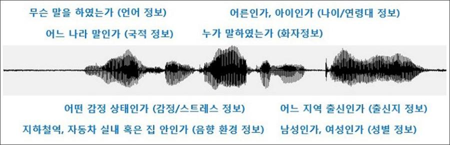 음성 파형(신호)과 그 안에 포함된 여러 정보