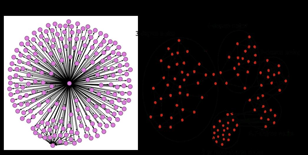 그림 10. degree assortativity가 낮은 네트워크(왼쪽)와 높은 네트워크(오른쪽) 예시